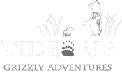 Tide Rip Logo with two bears